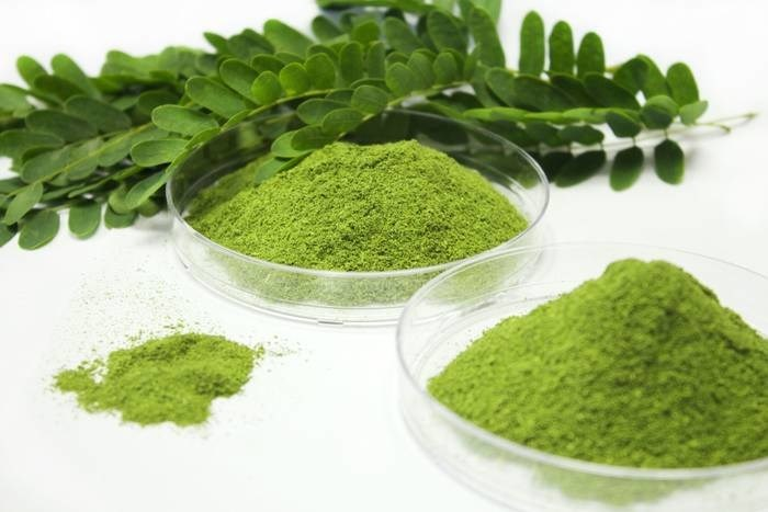 LOGO_Moringa Leaf Powder