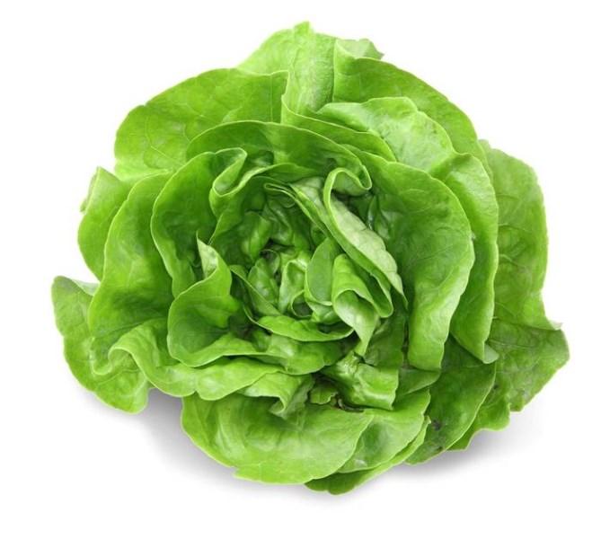 LOGO_Lettuce