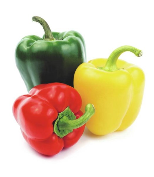LOGO_Sweet Peppers