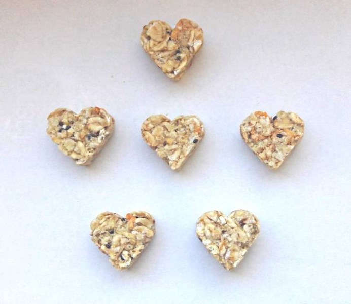 LOGO_Gluten free Little Hearts muesli snack with apple and chia