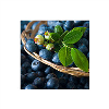 LOGO_IQF Berries and puree