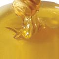 LOGO_Honig für die Verarbeitung in Lebensmitteln