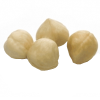 LOGO_Blanched Hazelnuts