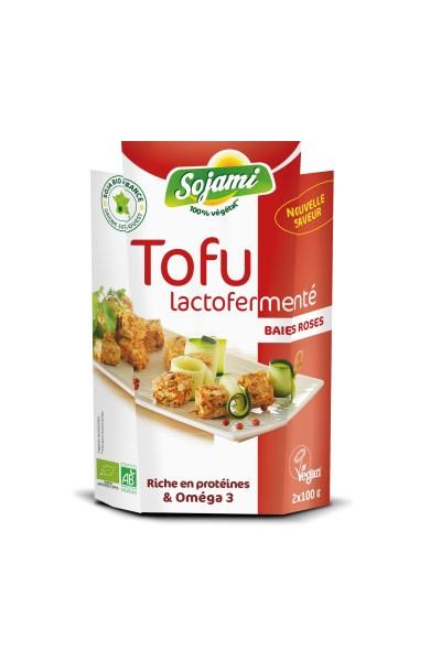 LOGO_LACTOFERMENTED TOFU