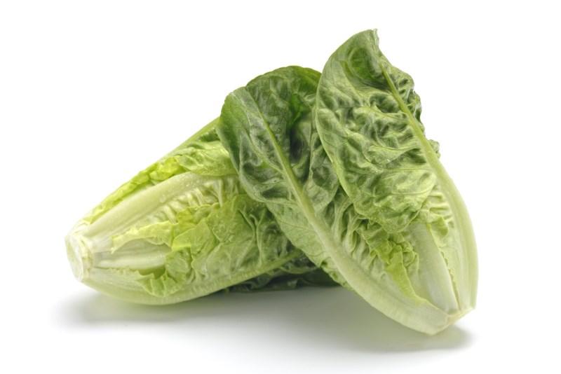 LOGO_Organic lettuce: (Little gem, Romaine, Iceberg, Batavia)