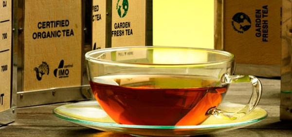 LOGO_Ökologische Tees