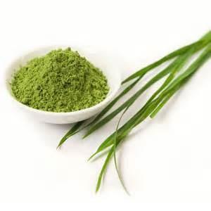 LOGO_Organic EU Barley Grass Powder