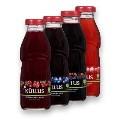 LOGO_Organic juices and nectars