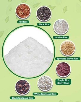 LOGO_Organic Rice Flour/Flake
