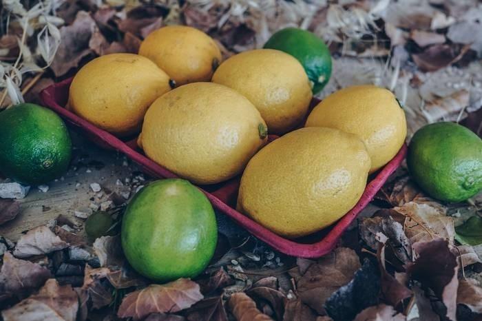 LOGO_Organic Citrus (Lemons, Oranges and Clementines)