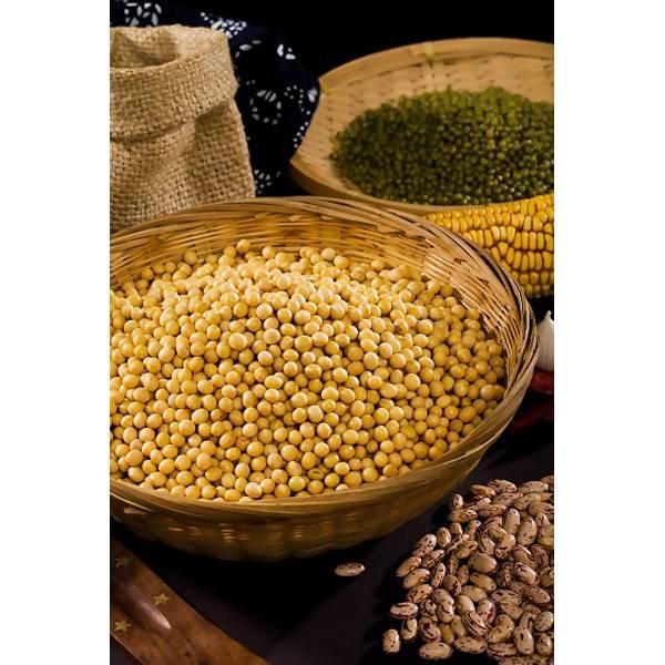 LOGO_organic soybean food grade