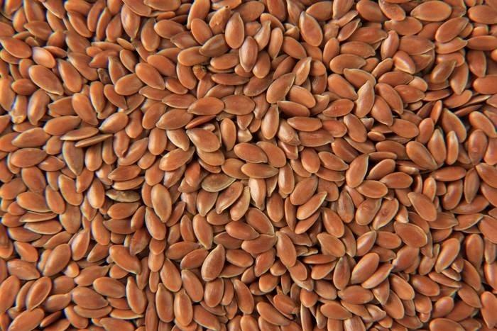 LOGO_Flax Seeds