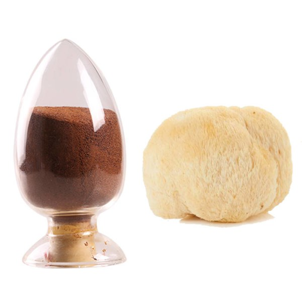 LOGO_Organic Lion's mane mushroom extract
