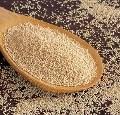 LOGO_Amaranth Seeds