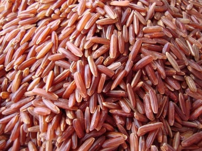 LOGO_Fairtrade Organic Red Rice