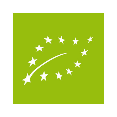 LOGO_European Union Recognition