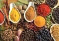 LOGO_Spices and Millets