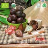 LOGO_Organic Salak Fruits