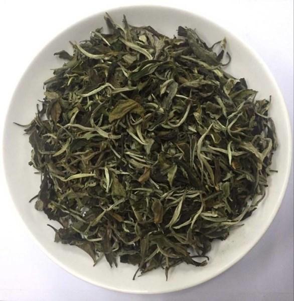 LOGO_Organic White Tea