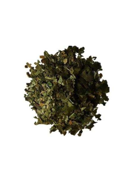LOGO_Waykana Bulk Guayusa Loose-leaf and Extract