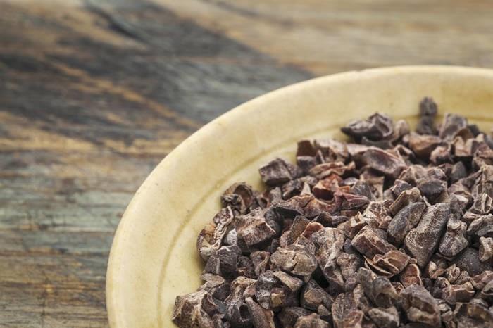 LOGO_Organic Raw Cacao Nibs