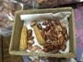 LOGO_wilde Erdnüsse