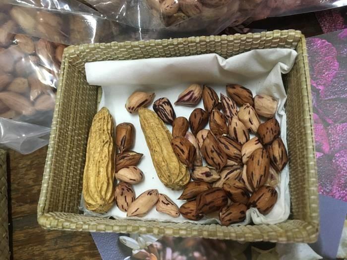 LOGO_striped peanuts
