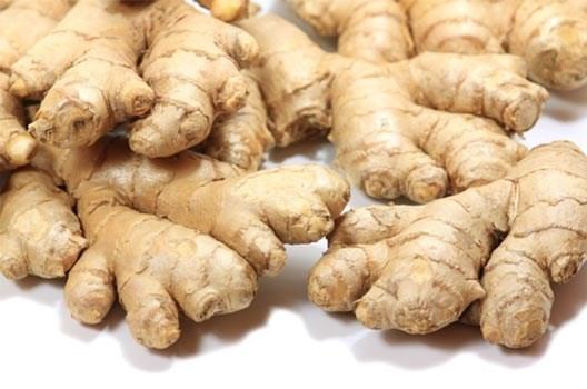 LOGO_Organic Ginger