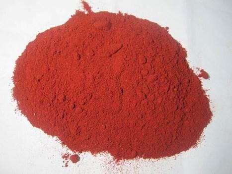 LOGO_Red turmeric powder