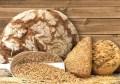 LOGO_Organic Sesame Protein