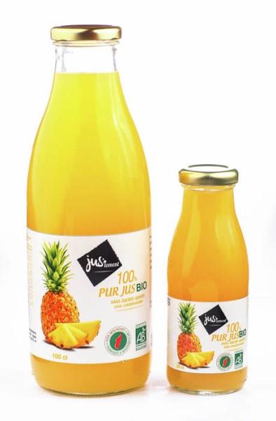 LOGO_Havamad Organic Pineapple Juice