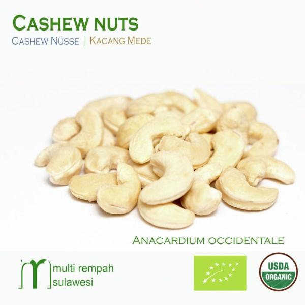 LOGO_Cashew Nuts