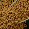 LOGO_ORGANIC Spices & Herbs