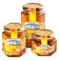 LOGO_Polyflora Honey