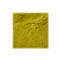 LOGO_Nopal powder