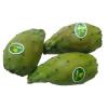 LOGO_Fresh organic prickly pear cactus