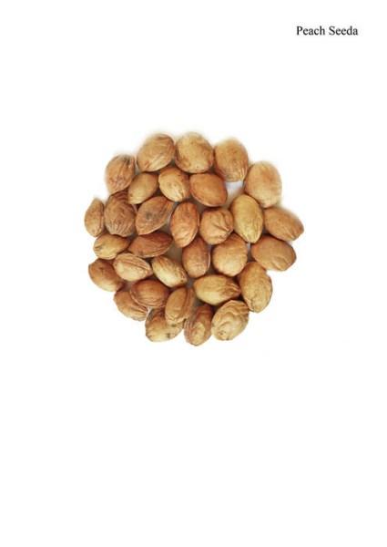 LOGO_Tibetan Peach Seeds