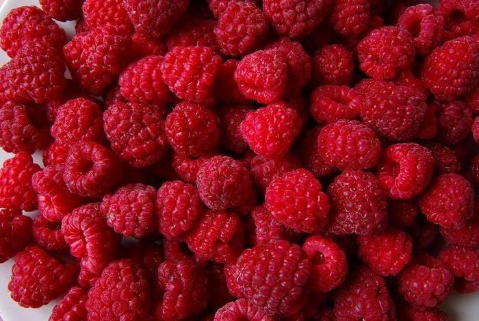 LOGO_IQF organic raspberry