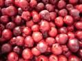 LOGO_IQF organic sweet cherry