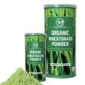 LOGO_Organic Superfood - Wheatgrass Powder