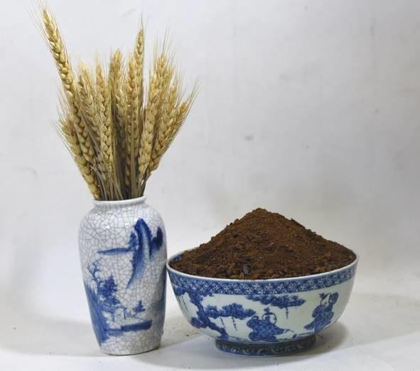 LOGO_Organic canola meal