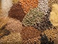 LOGO_Cereals | Legumes | Oilseeds and oil cakes