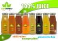 LOGO_Frische Frucht und Gemuese Saft