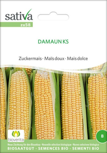 LOGO_DAMAUN KS