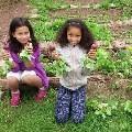 LOGO_Bildungsfonds Landwirtschaft