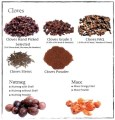 LOGO_Organic and Fair Trade Cloves
