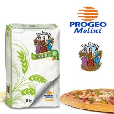 LOGO_special flours for pizza