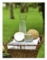 LOGO_Organische Kokosnuss Wasser