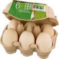 LOGO_Organic Eggs