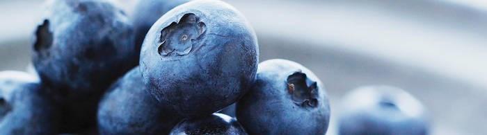 LOGO_Fruit & Vegetable Ingredients